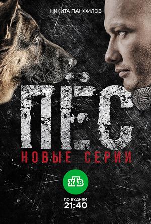 Сериал «Пёс» (2015 – ...)