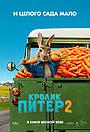 Фильм «Кролик Питер 2» (2021)