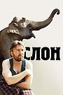 Фильм «Слон» (2010)